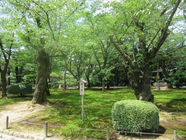 【金沢・能登】北陸を一人旅【富山】の画像29枚目!