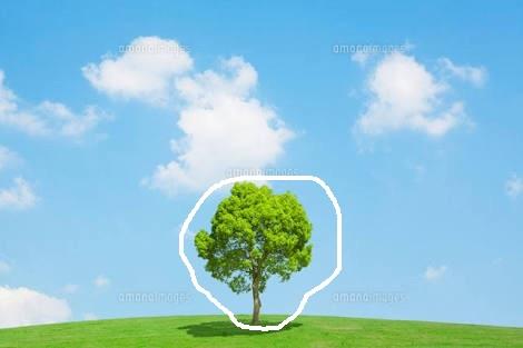 誰かこの画像の木を消しての画像10枚目!
