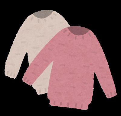fashion_sweater_set.png