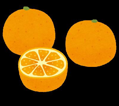 fruit_mikan_set.png