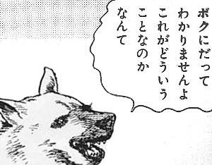ツァ犬の画像11枚目!