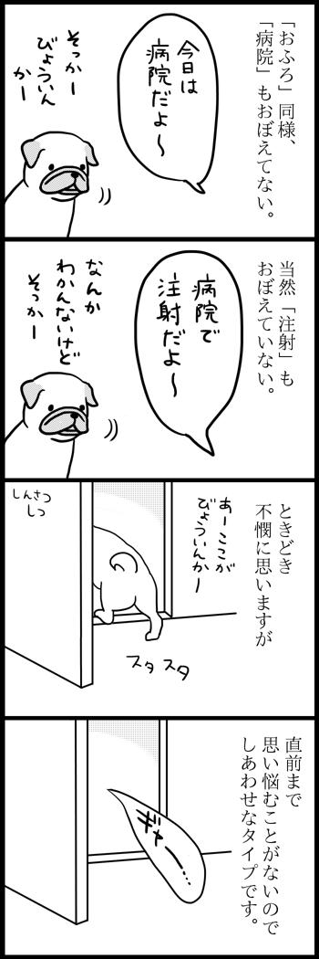 駄犬「ごすずん」の画像6枚目!