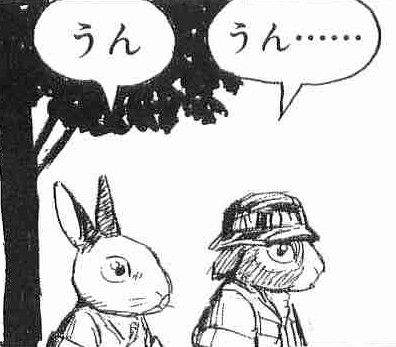 カンガルーの画像4枚目!