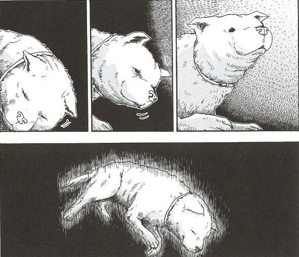 駄犬「ごすずん」の画像9枚目!
