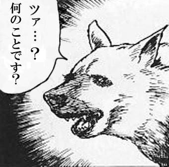 ツァ犬の画像109枚目!