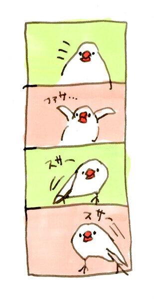 文鳥の文ちゃんスレの画像15枚目!