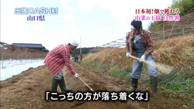 TOKIOスレ割りと本気で農家だよねの画像6枚目!
