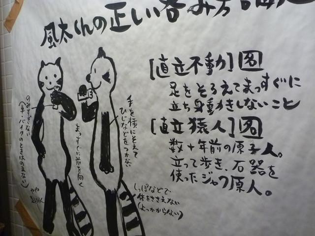 レッサーパンダの画像7枚目!