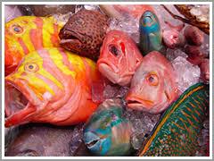 沖縄の魚屋の画像3枚目!