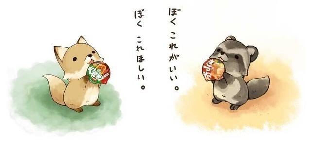 キツネ「コンコン」の画像15枚目!