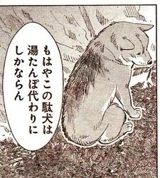 駄犬「ごす」の画像7枚目!