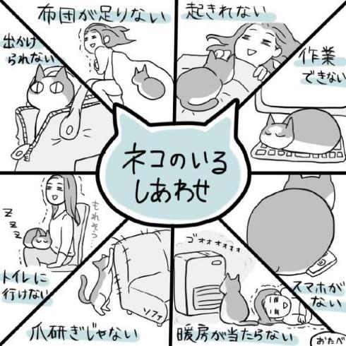 猫の画像24枚目!