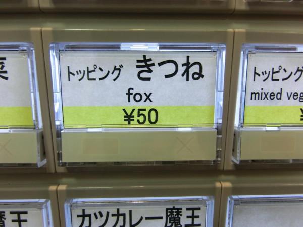 キツネ「コンコン」の画像13枚目!