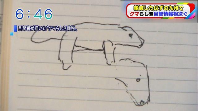 駄犬「ごすずん」の画像40枚目!