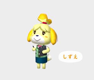 【駄犬】シーズーの画像22枚目!