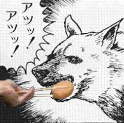ツァ犬の画像105枚目!