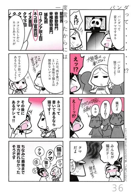 レッサーパンダの画像14枚目!