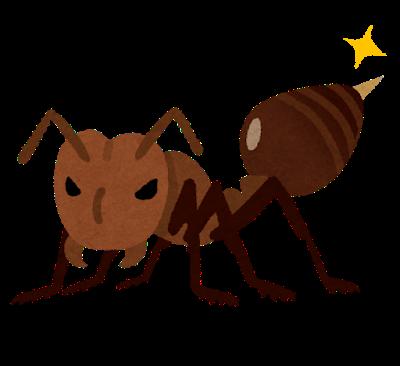 愛知県でヒアリの女王数十匹を発見 働きアリも1000匹以上